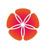 Тематика: Общедоступные № кнопки 33 «Дорама» — это первый телеканал, посвященный киноиндустрии стран Востока